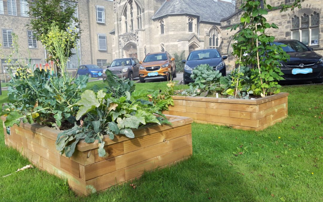 'Incredible Edible' at St Andrew's, Skipton